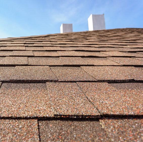 Asphalt shingles on new roof