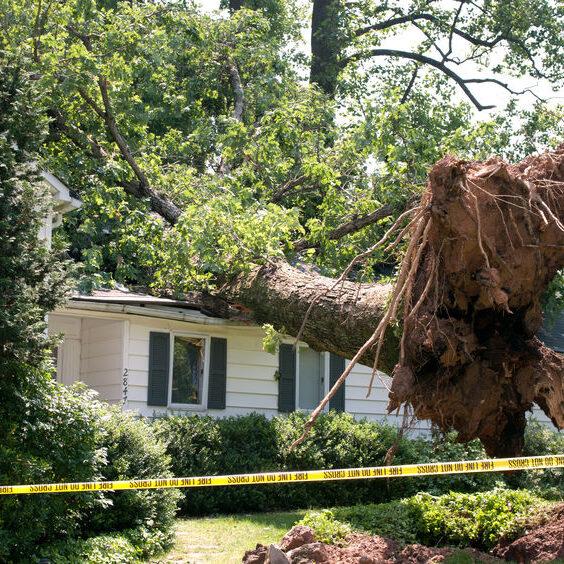 Major storm damage for emergency repair